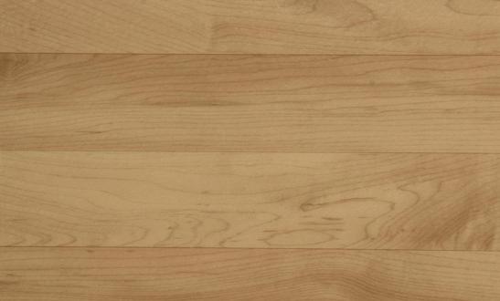 OMNISPORTS V83 - Maple MAPLE gym flooring Dubai