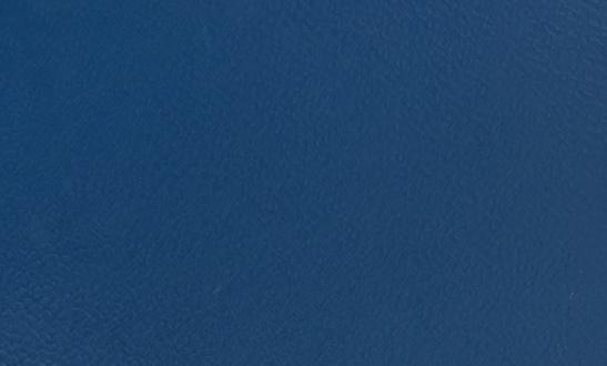 Royal-blue-200159003-5-mm